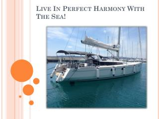 Live In Perfect Harmony With The Sea!