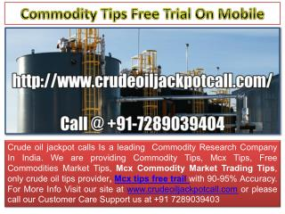 Only Crude Oil Tips Provider