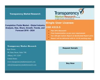 Completion Fluids Market -Global Industry Analysis, Size, Share, Growth, Trends, and Forecast 2016-2024