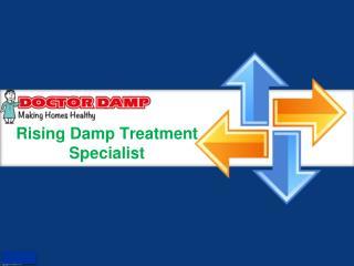 Rising Damp Treatment Specialist