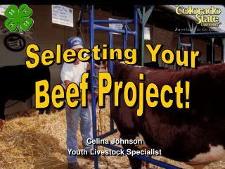 Celina Johnson Youth Livestock Specialist