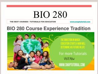 BIO 280 Course Experience Tradition /  snaptutorial.com