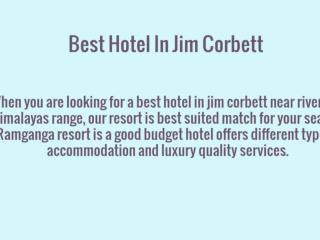 Best Budget Accommodation Hotel In Corbett