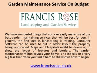 Garden maintenance service on budget