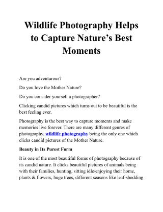 Dr. Vinay Rawlani Likes Wildlife Photography