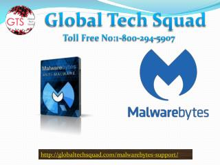Support For Malwarebytes Antivirus Toll Free 1-800-294-5907
