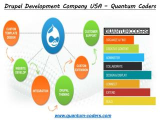 Best Drupal Development Company USA