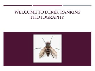 Derek Rankins Photographer