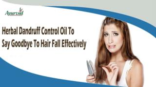 Herbal Dandruff Control Oil To Say Goodbye To Hair Fall Effectively
