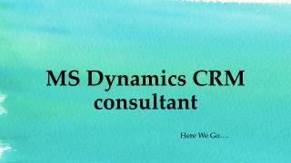 MS Dynamics CRM Consultant