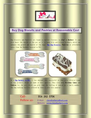 Buy Dog Biscuits and Pastries at Reasonable Cost