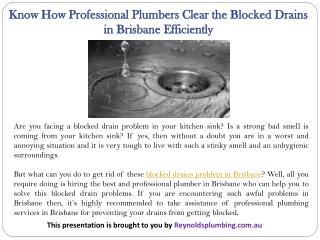 Know How Professional Plumbers Clear the Blocked Drains in Brisbane Efficiently