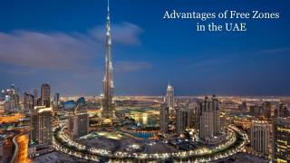 Free Zone Business Setup Consultants in UAE