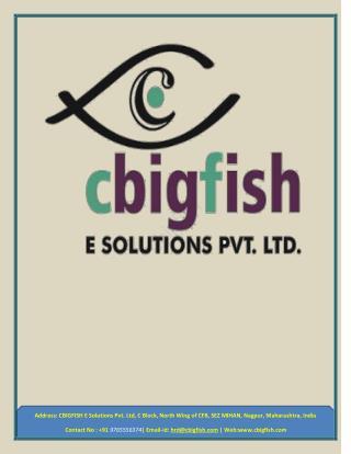 Cbigfish E-Solutions - Software Development Company, Mobile App & Web Development