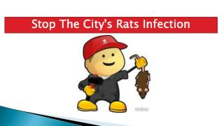 Stop The City's Rats Infection