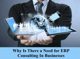 Why is there a need for ERP consulting in businesses