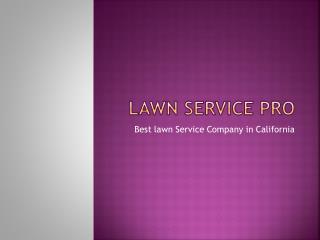 Lawn Service Pro-Best Lawn Service Company in California