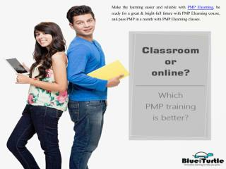 BlueiTurtle - Best PMP Elearning Institute