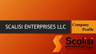 Scalisi Enterprises Llc
