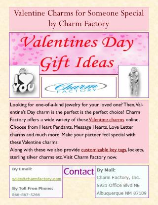 Valentine Charms for Someone Special by Charm Factory
