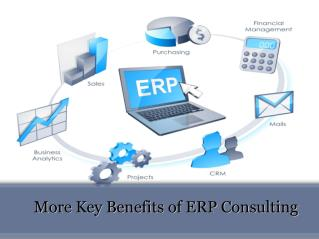 More key benefits of ERP consulting