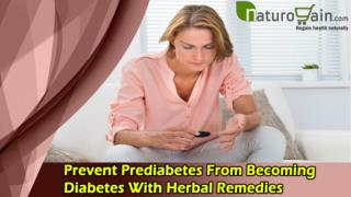 Prevent Prediabetes From Becoming Diabetes With Herbal Remedies