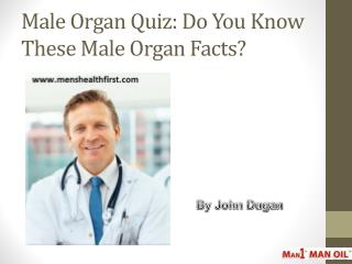 Male Organ Quiz: Do You Know These Male Organ Facts?