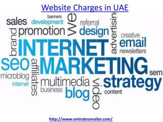 Get the best website charges in UAE
