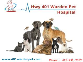 Animal Hospital In Scarborough | Hwy 401 Warden Pet Hospital
