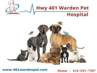 Animal Hospital In Scarborough | Hwy 401 Warden Pet Hospital