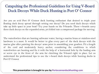 Catapulting the Professional Guidelines for Using V-Board Duck Decoys While Duck Hunting in Port O' Connor