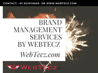 Brand Management Services by WebTecz