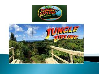 Maui Zipline Activities - Jungle Zip