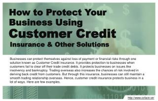 Protect business using customer credit insurance and other solutions.