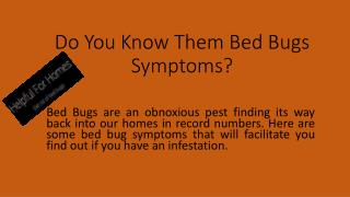 Bed Bug Symptoms