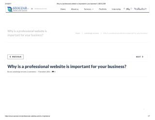 professional website is important for your business