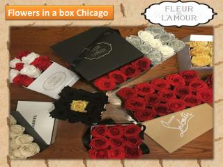 Flowers in a box Chicago