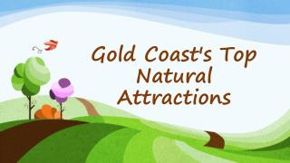 Gold Coast's Top Natural Attractions