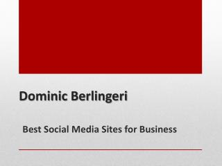 Dominic Berlingeri - Best Social Media Sites for Business