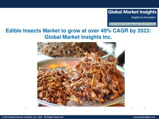 Edible Insects Industry in Brazil to exceed USD 55 million revenue by 2023