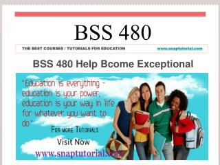 BSS 480 Help Bcome Exceptional/ snaptutorial.com
