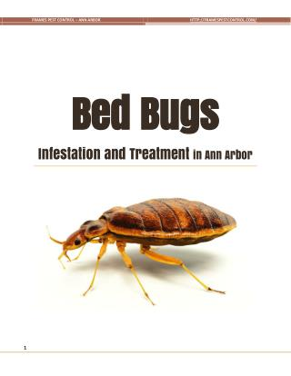 Bed Bugs Infestation and Treatment in Ann Arbor