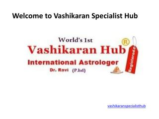 Services offer at Vashikaran Specialist Hub