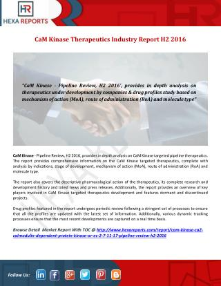 CaM Kinase Pipeline Review H2 2016, Drug Profile Analysis