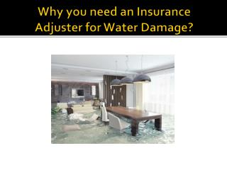 Why you need an Insurance Adjuster for Water Damage?
