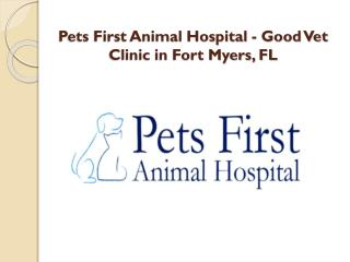 Pets First Animal Hospital - Good Vet Clinic in Fort Myers, FL