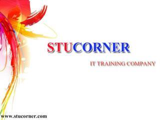 Stucorner-Digital Marketing Training