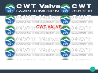 Deal with manufacturers of Check Valve in Canada