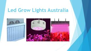 Led Grow Lights Australia