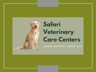 Animal Hospital League City